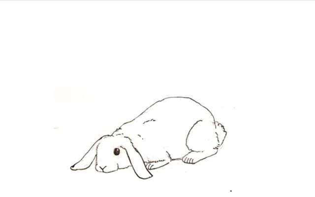 An Animation About a Rabbit
